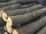 Дубовая Обрезная доска Buy oak board oak LLC Mitlife - photo 2
