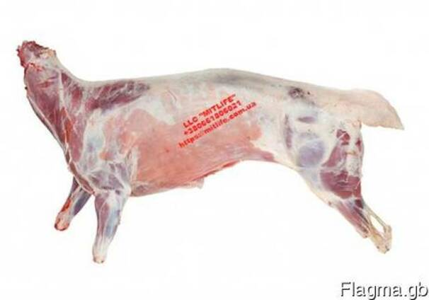 Оптом Баранина Мясо Украина LLC Mitlife