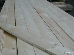 Pine whitepine - photo 2